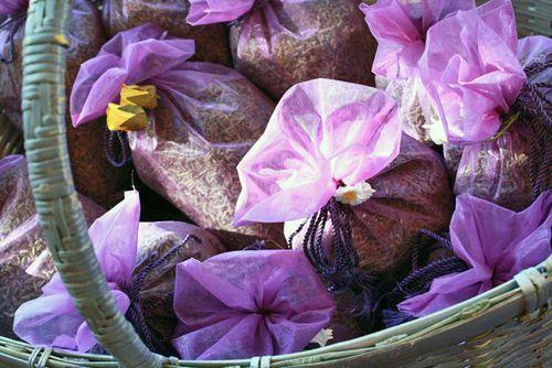 Lavender5