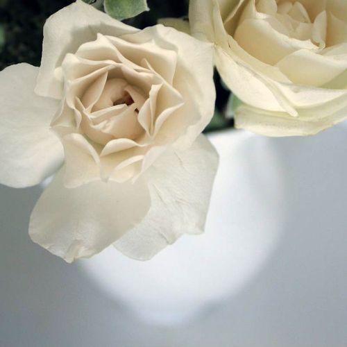 White510f